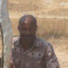 Taurai Mutigwa